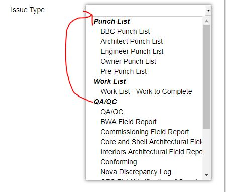 Users Labeling Every New Issue As Punch List  Autodesk Community