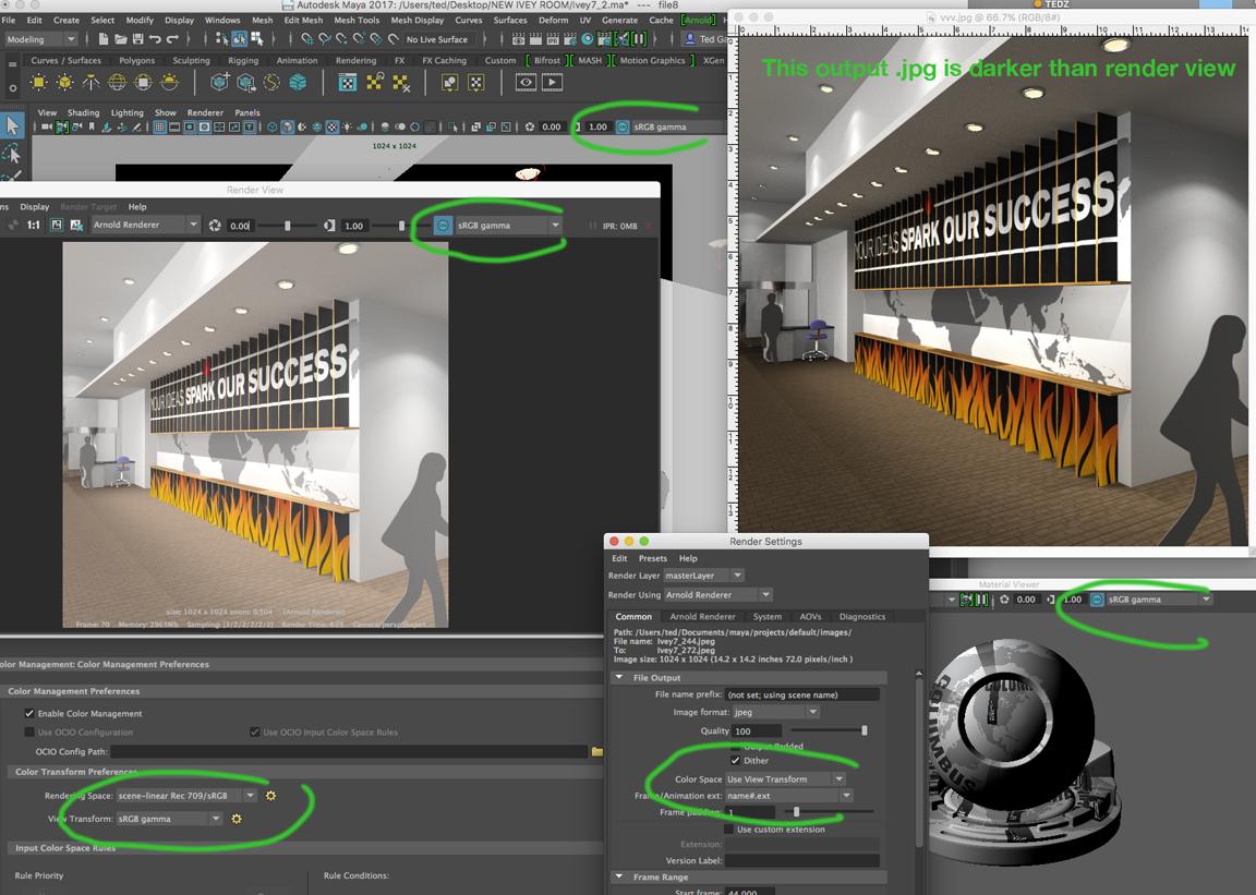 Solved: Output render w/ Color Management is darker than