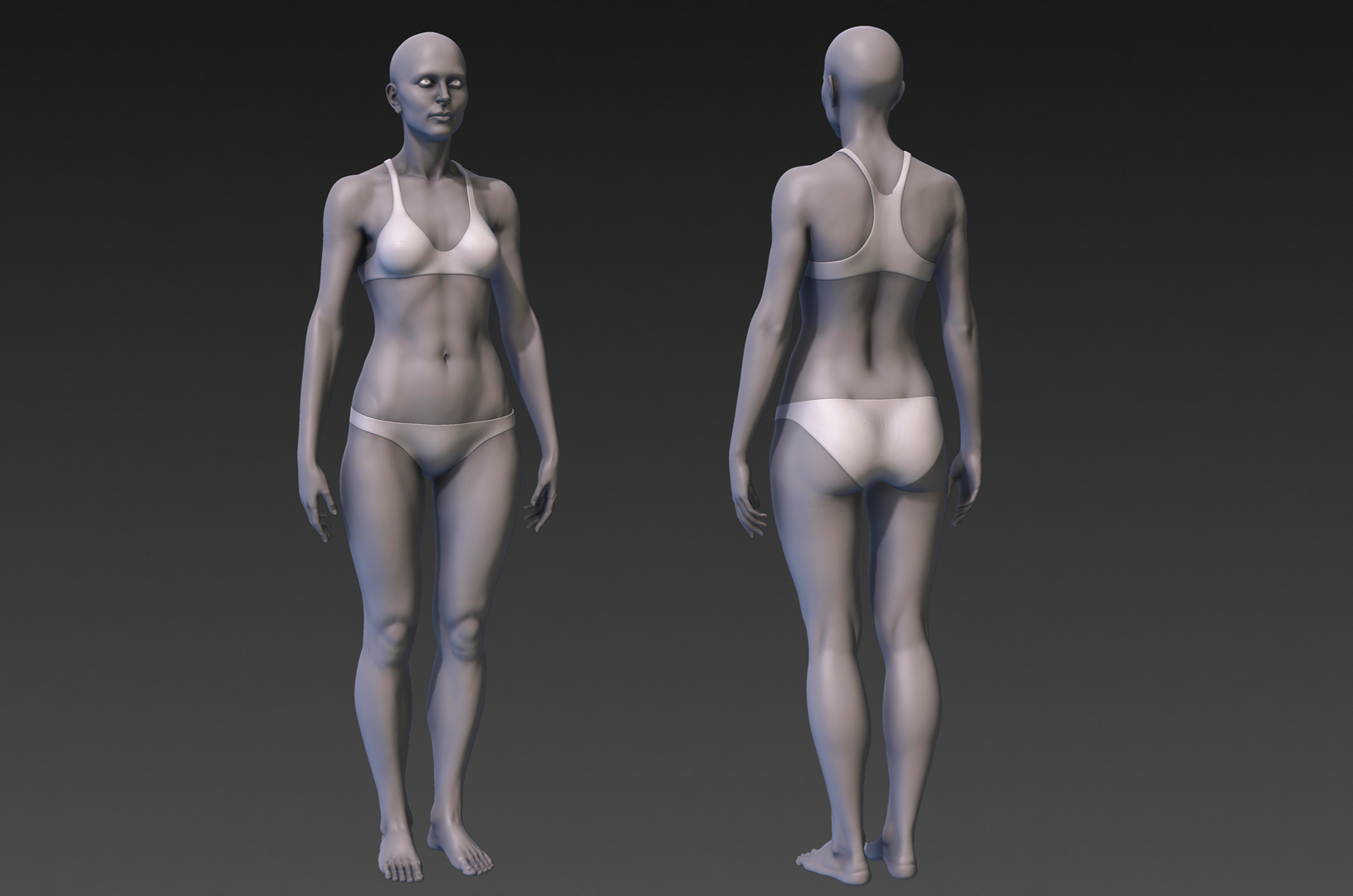 Female Anatomy Study (Warning Nudity) - Autodesk Community- Mudbox
