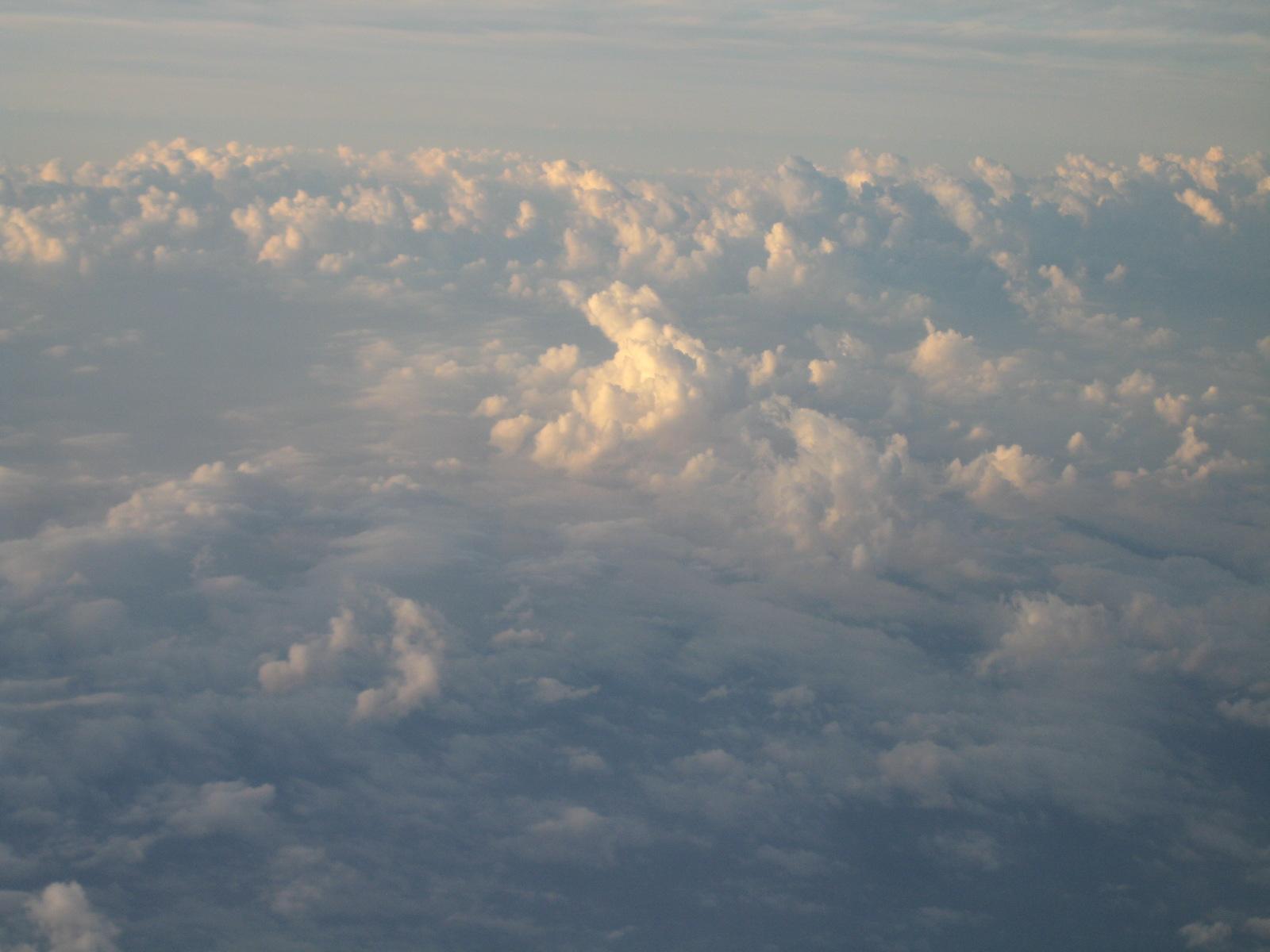 2010-01-21 15.12.25.jpg