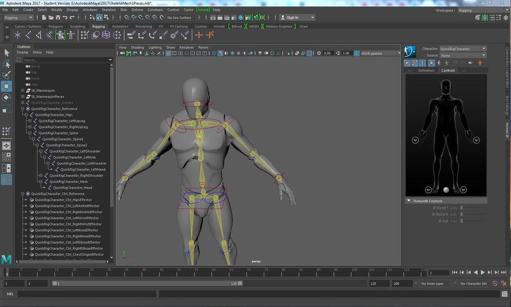 Human IK Skeleton Tab? - Autodesk Community- Maya