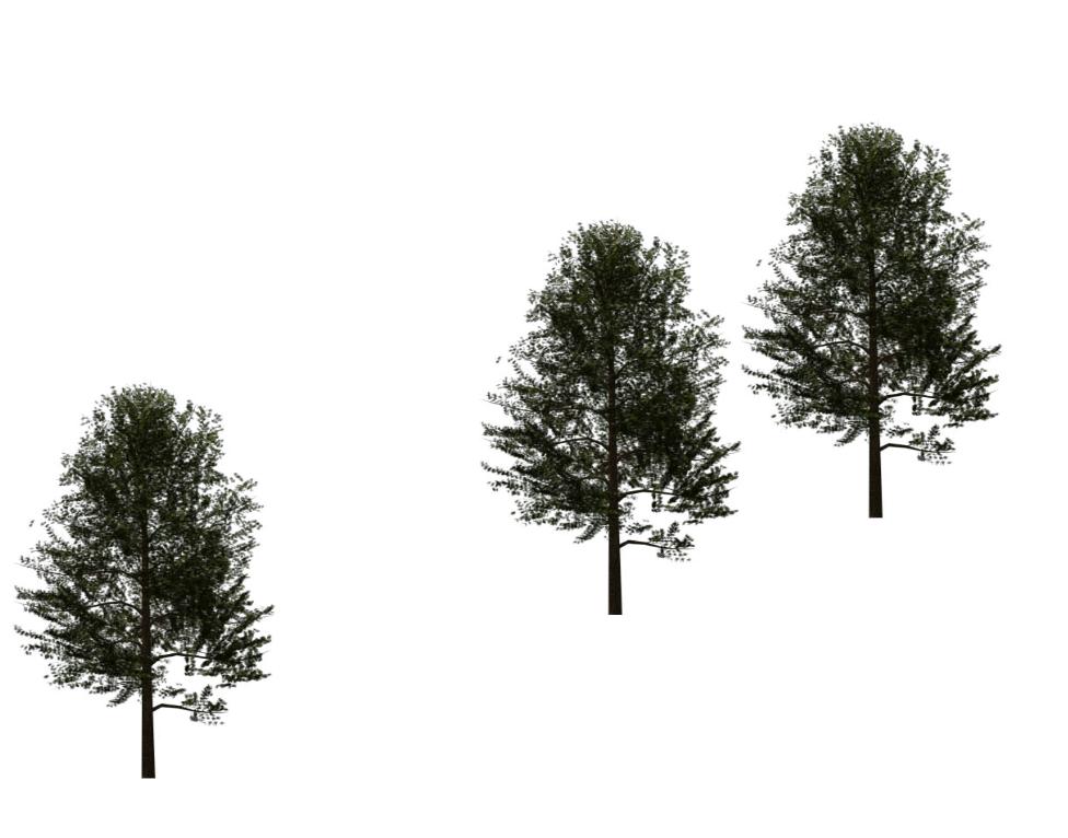 Solved: 2015: planting - Autodesk Community- Revit Products