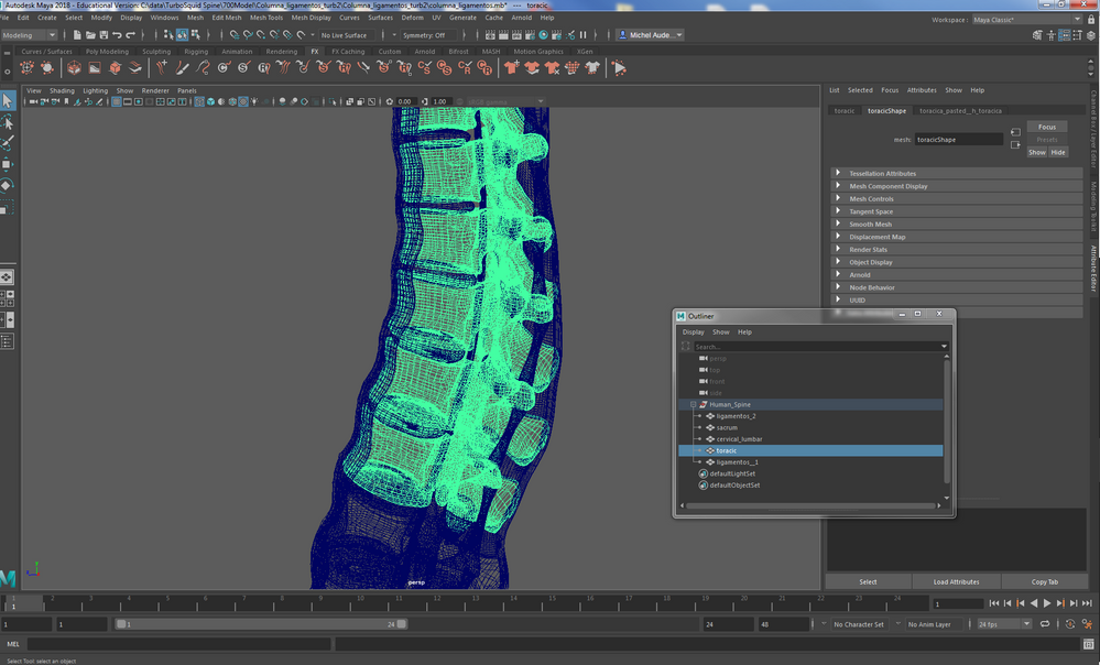How to convert a Maya file featuring multi-surface model to